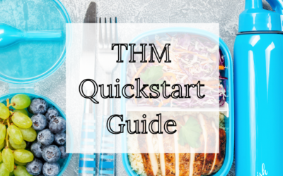 Quickstart Guide to THM